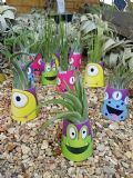 Mini Monster Airplant Wrap FREE first class postage